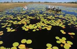 Botswana - The Selinda Canoe Trail