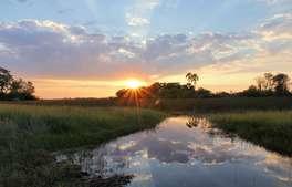 Botswana - Complete Botswana in Style