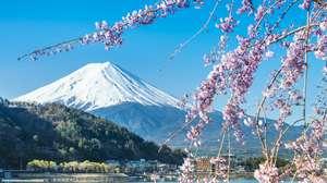 Japan - Highlights of Japan