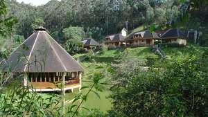 Vakona Forest Lodge