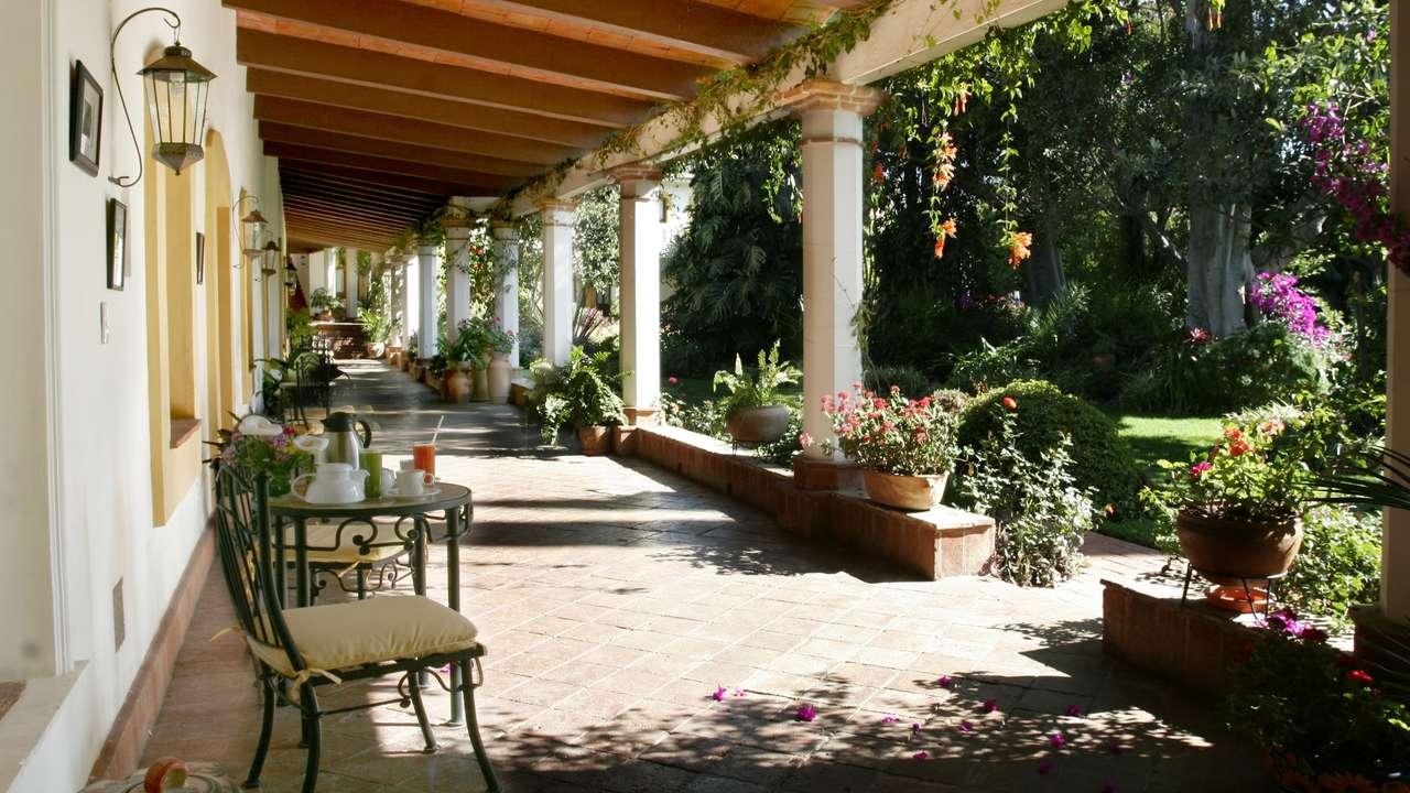Gardens, Hacienda Los Laureles, Oaxaca, Mexico